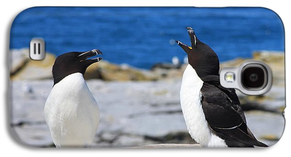 Razorbills Calling On Island Galaxy S4 Case by John Burk