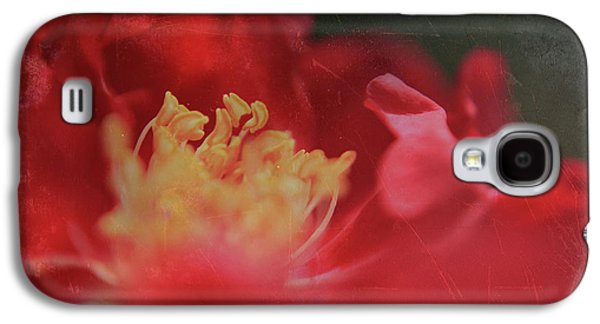 Macro Digital Galaxy S4 Cases - Reaching For Joy Galaxy S4 Case by Laurie Search