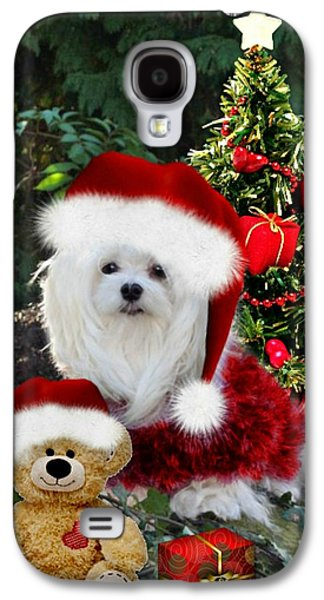 Puppies Galaxy S4 Cases - Ready for Christmas Galaxy S4 Case by Morag Bates
