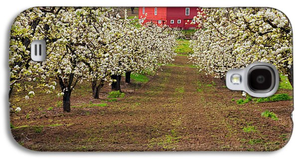Red Barns Galaxy S4 Cases - Red Barn Avenue Galaxy S4 Case by Mike  Dawson