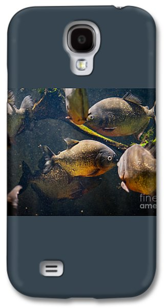 Red Bellied Hungry Piranha Galaxy S4 Case by Arletta Cwalina