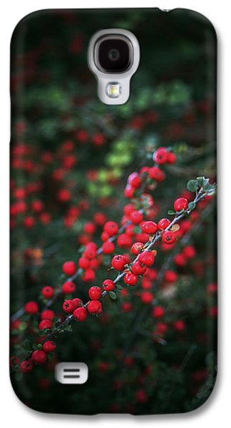 Abstracted Galaxy S4 Cases - Red berries in the forest Galaxy S4 Case by Vishwanath Bhat