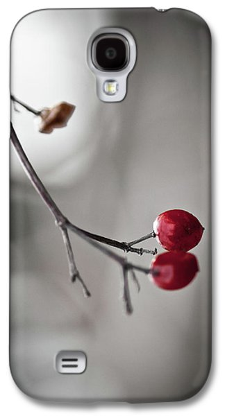 Dried Photographs Galaxy S4 Cases - Red Berries Galaxy S4 Case by Mandy Tabatt