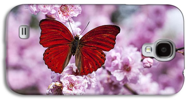 Red Butterfly On Plum  Blossom Branch Galaxy S4 Case by Garry Gay