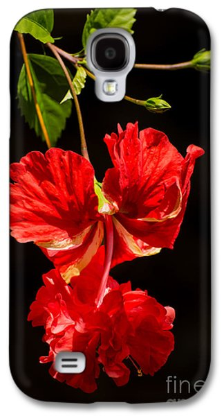 Hibiscus Galaxy S4 Cases - Red double hibiscus Galaxy S4 Case by Zina Stromberg