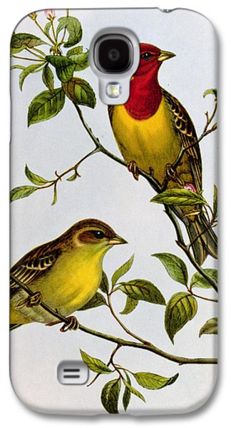 Red Headed Bunting Galaxy S4 Case by John Gould