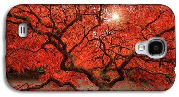 Red Lace Galaxy S4 Case by Dan Mihai