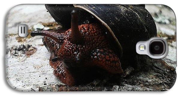 Nature Abstract Pyrography Galaxy S4 Cases - Red Snail Galaxy S4 Case by William Goodson