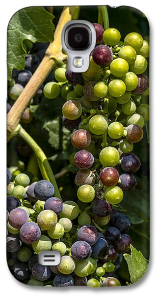 Red Wine Grape Colors In The Sun Galaxy S4 Case by Teri Virbickis