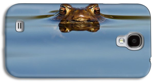 Fens Galaxy S4 Cases - Reflections - Toad in a Lake Galaxy S4 Case by Roeselien Raimond