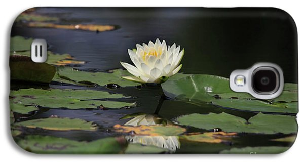 Lilly Pad Galaxy S4 Cases - Reflective Lilly Galaxy S4 Case by Deborah Benoit
