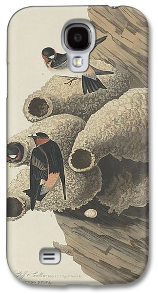 Swallow Galaxy S4 Cases - Republican Cliff Swallow Galaxy S4 Case by John James Audubon