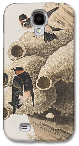 Swallow Galaxy S4 Cases - Republican or Cliff Swallow Galaxy S4 Case by John James Audubon