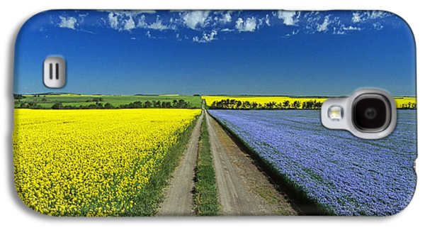 Colour Image Photographs Galaxy S4 Cases - Road Through Flowering Flax And Canola Galaxy S4 Case by Dave Reede
