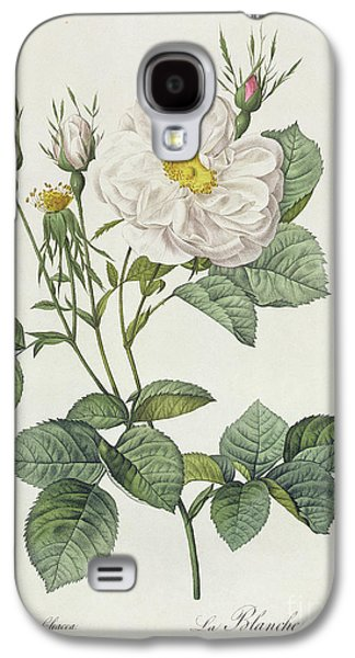 Botanical Galaxy S4 Cases - Rosa Alba Foliacea Galaxy S4 Case by Pierre Joseph Redoute