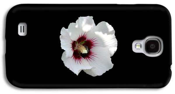 Buy Galaxy S4 Cases - Rose of Sharon Flower and Bumble Bee Galaxy S4 Case by Rose Santuci-Sofranko
