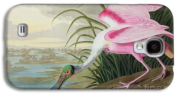 River Paintings Galaxy S4 Cases - Roseate Spoonbill Galaxy S4 Case by John James Audubon