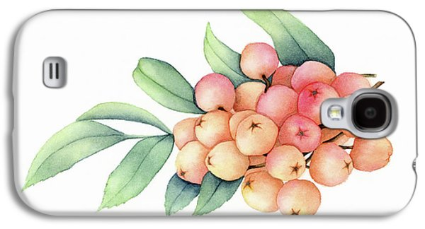 Rowan Berries Galaxy S4 Case by Taylan Soyturk