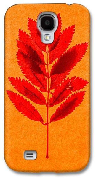 Change Paintings Galaxy S4 Cases - Rowan leaves Galaxy S4 Case by Graeme Harris