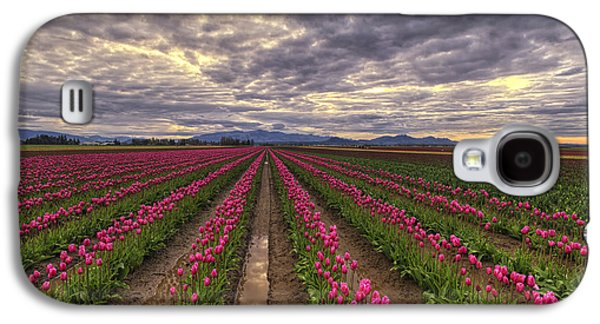Rows Of Pink Impressions  Galaxy S4 Case by Mark Kiver