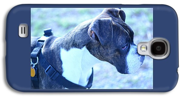 Boxer Puppy Galaxy S4 Case by Justin Marien