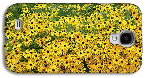 Rudbeckia Fulgida Deamii Flowers Galaxy S4 Case by Tim Gainey