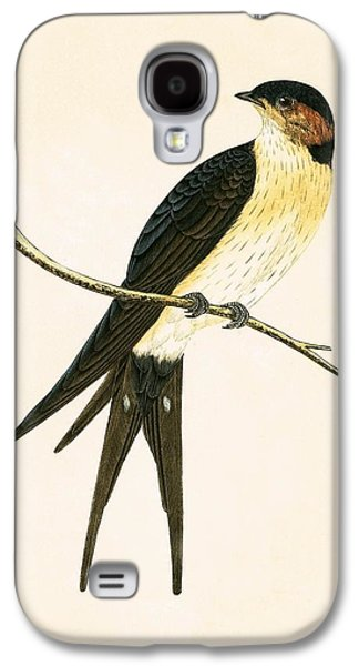 Rufous Swallow Galaxy S4 Case by English School