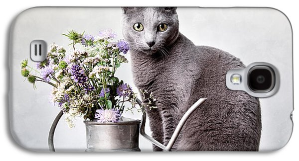 Grey Photographs Galaxy S4 Cases - Russian Blue 02 Galaxy S4 Case by Nailia Schwarz