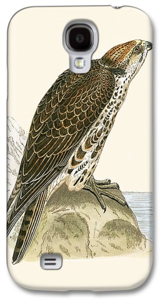 Saker Falcon Galaxy S4 Case by English School