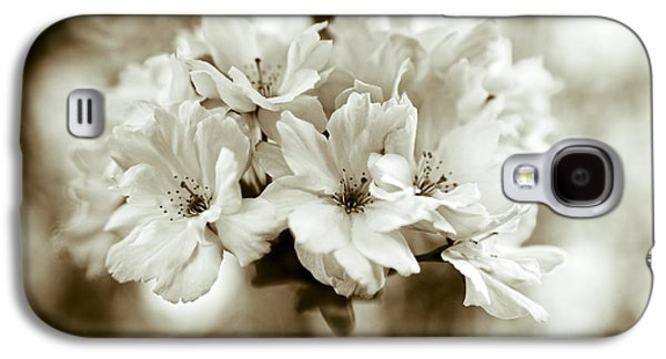 Sakura Galaxy S4 Case by Frank Tschakert