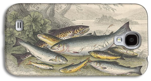 Botanical Galaxy S4 Cases - Salmon and Trout Galaxy S4 Case by Oliver Goldsmith