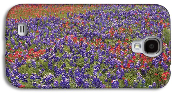 Animals and Earth - Galaxy S4 Cases - Sand Bluebonnet And Paintbrush Galaxy S4 Case by Tim Fitzharris
