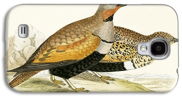 Sand Grouse Galaxy S4 Case by English School