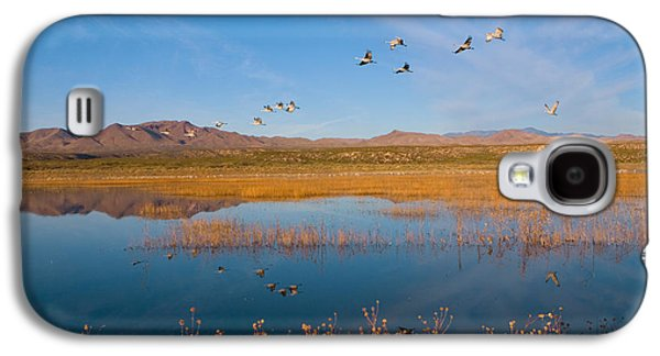Wildlife Refuge. Galaxy S4 Cases - Sandhill Cranes In Flight Galaxy S4 Case by Panoramic Images