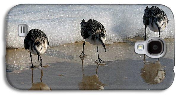 Dan Friend Galaxy S4 Cases - Sandpipers Feeding Galaxy S4 Case by Dan Friend