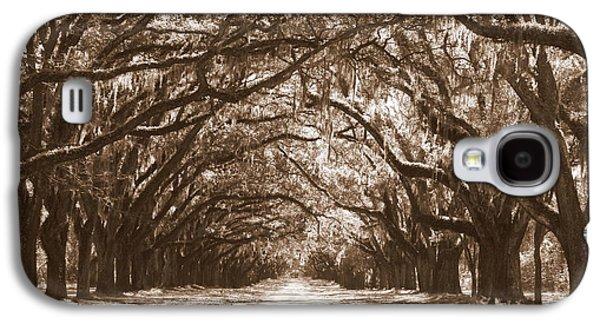 Subtle Colors Galaxy S4 Cases - Savannah Sepia - Glorious Oaks Galaxy S4 Case by Carol Groenen