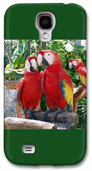 Scarlet Macaws Galaxy S4 Case by Ellen Henneke