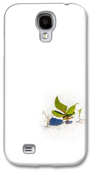 Sand Dunes Galaxy S4 Cases - Sea Grape Galaxy S4 Case by Marvin Spates