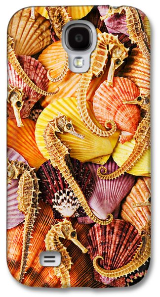 Sea Horses And Sea Shells Galaxy S4 Case by Garry Gay
