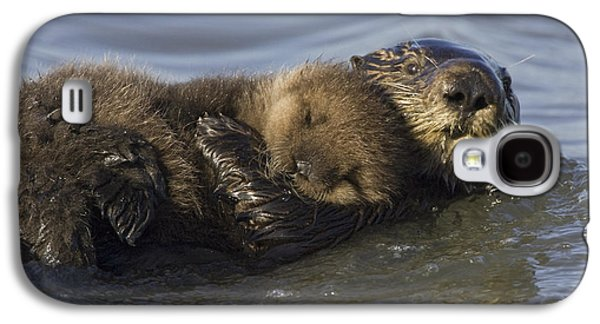 Sea Otter Mother With Pup Monterey Bay Galaxy S4 Case by Suzi Eszterhas