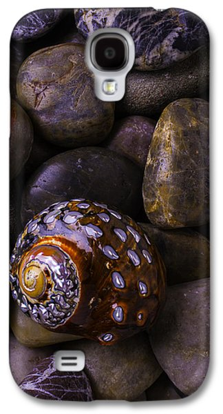 Brown Tones Galaxy S4 Cases - Sea Snail Shell On Rocks Galaxy S4 Case by Garry Gay