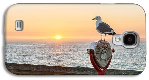 Sun Galaxy S4 Cases - Seagull Watching The Sunset Galaxy S4 Case by Eddie Yerkish