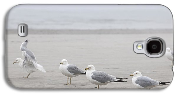 Foggy Ocean Galaxy S4 Cases - Seagulls on foggy beach Galaxy S4 Case by Elena Elisseeva
