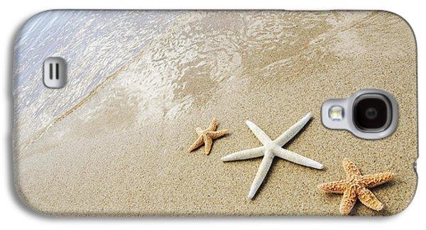 Locations Galaxy S4 Cases - Seastars on Beach Galaxy S4 Case by Mary Van de Ven - Printscapes