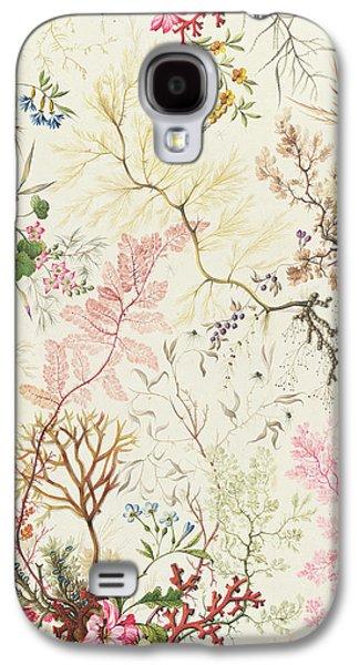 Motifs Galaxy S4 Cases - Seaweed design for silk material Galaxy S4 Case by William Kilburn