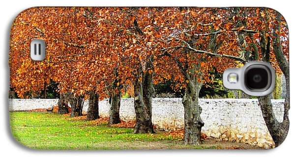 Abstract Digital Pastels Galaxy S4 Cases - Seven Trees in Autumn Ha  Galaxy S4 Case by Gert J Rheeders