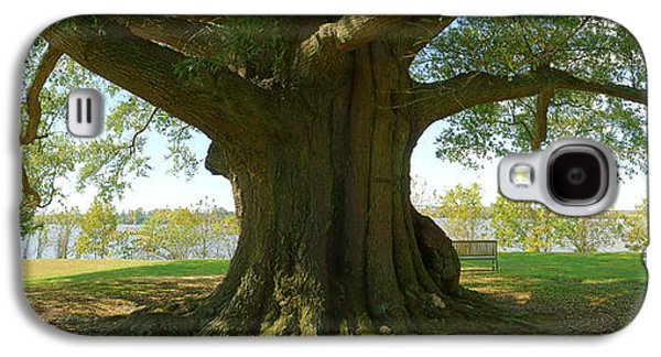 Park Scene Digital Galaxy S4 Cases - Shade Tree 2 Panoramic Galaxy S4 Case by Mike McGlothlen