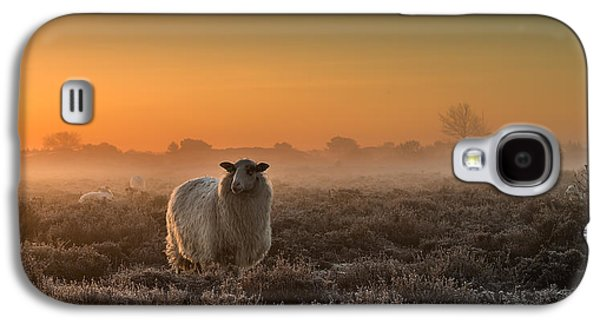 Haze Galaxy S4 Cases - Sheep In The Mist Galaxy S4 Case by Rijko Ebens