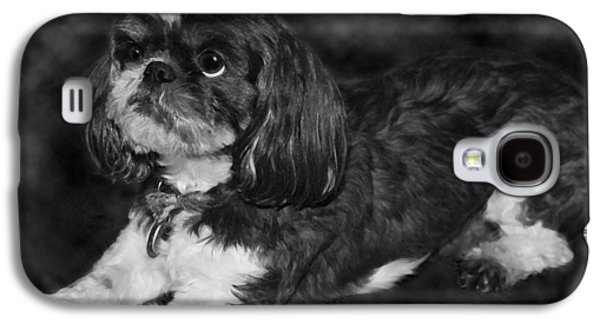 Recently Sold -  - Puppies Galaxy S4 Cases - Shih Tzu Galaxy S4 Case by Adam Romanowicz