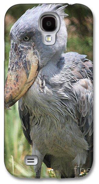 Shoebill Stork Galaxy S4 Case by Carol Groenen